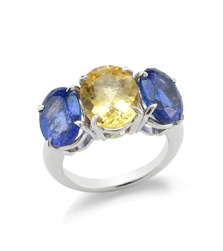 blue_yellow_ring (2)